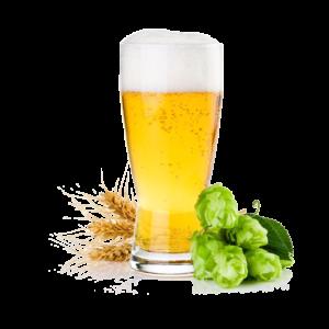 Foto rappresentante una birra bionda con le spighe di grano e il luppolo