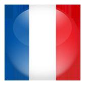Cerchio rappresentante la bandiera francese